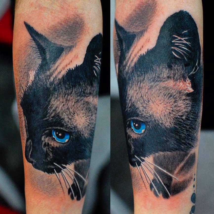 katze kater cat tattoo color farbe black schön amazing wahnsinn marci tattoo anansi münchen schön beste bestes bester