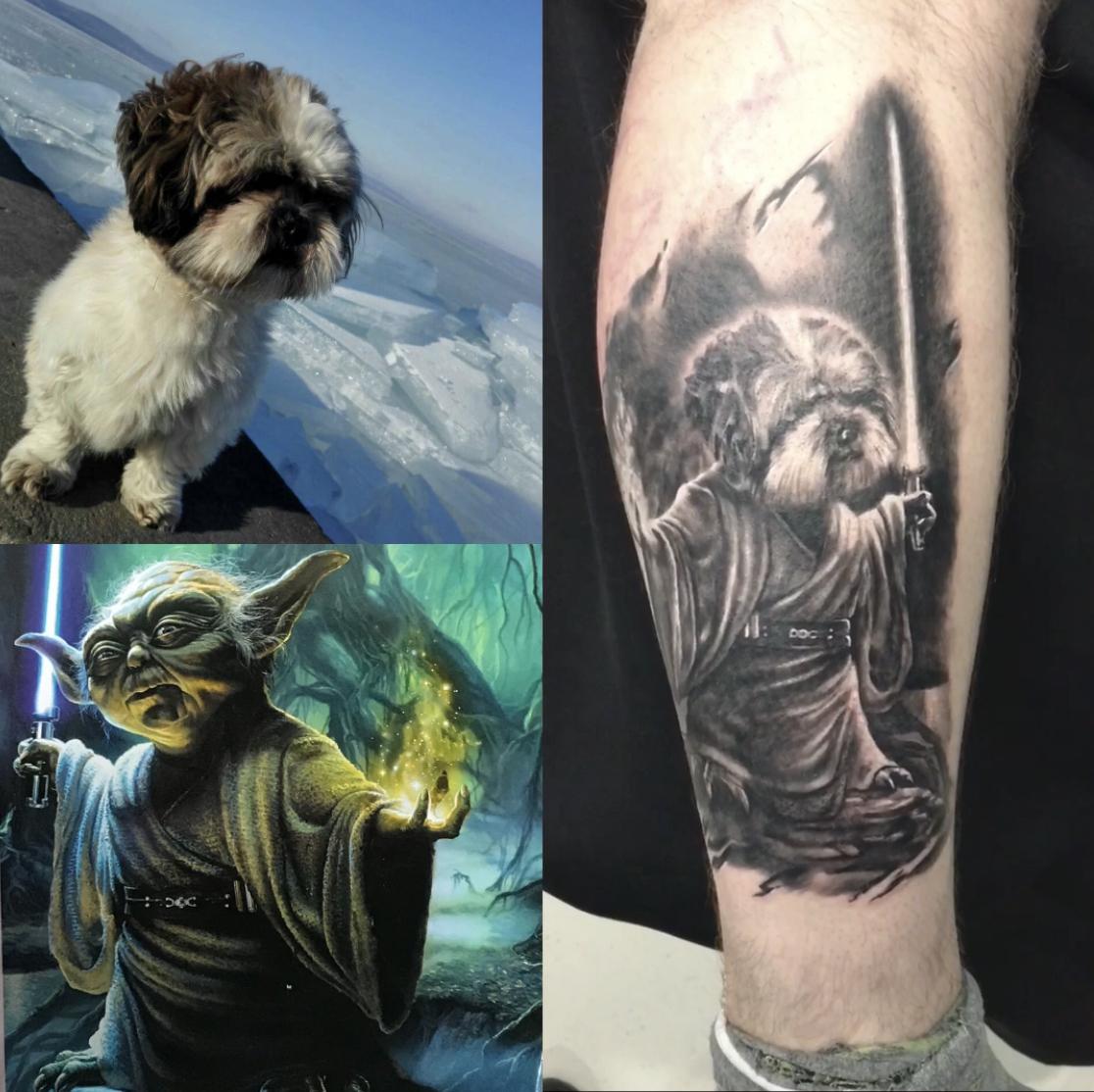 Yodog  / Csaba,  Yoda,  Star Wars,  and a little dog