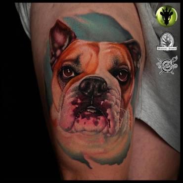 Mehr Realismus geht nicht – Joe –  Bulldog – eine Erinnerung