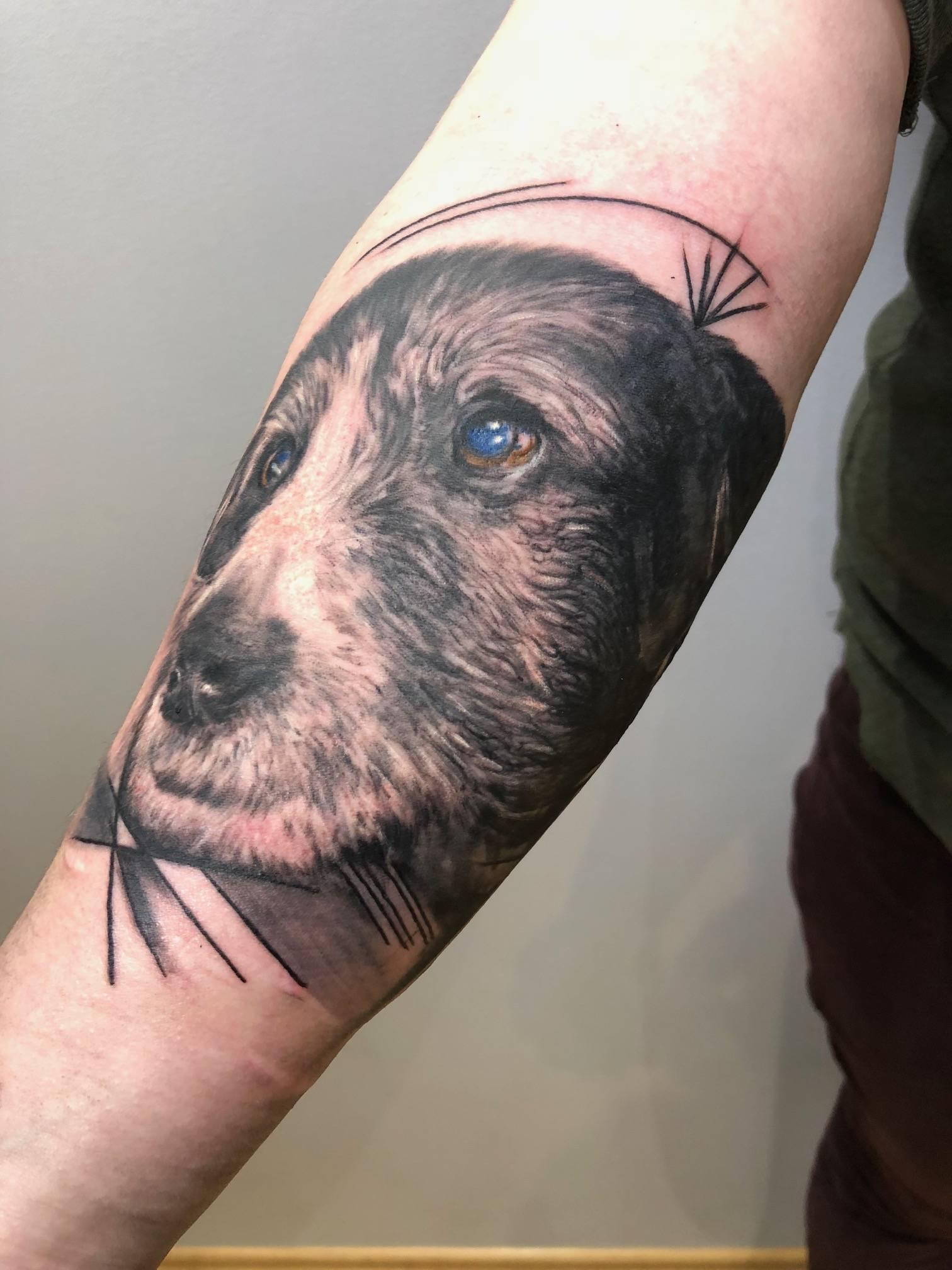 tattoo studio anansi münchen munich dog hund portrait schwarz black laszlo tätowierer best
