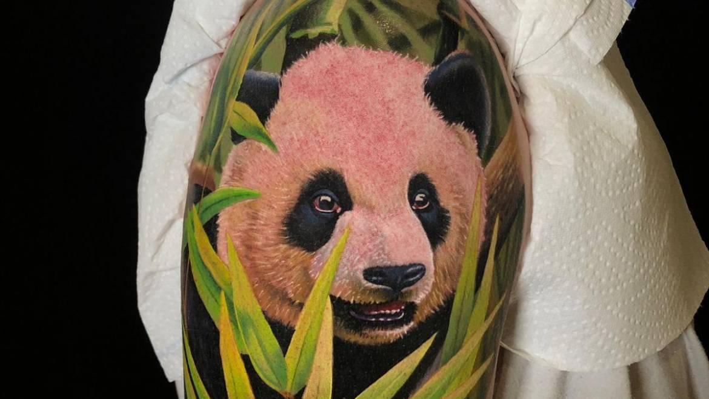 Panda in Farbe vom Joe  – wir lieben Tier-Tattoos!  Immer !