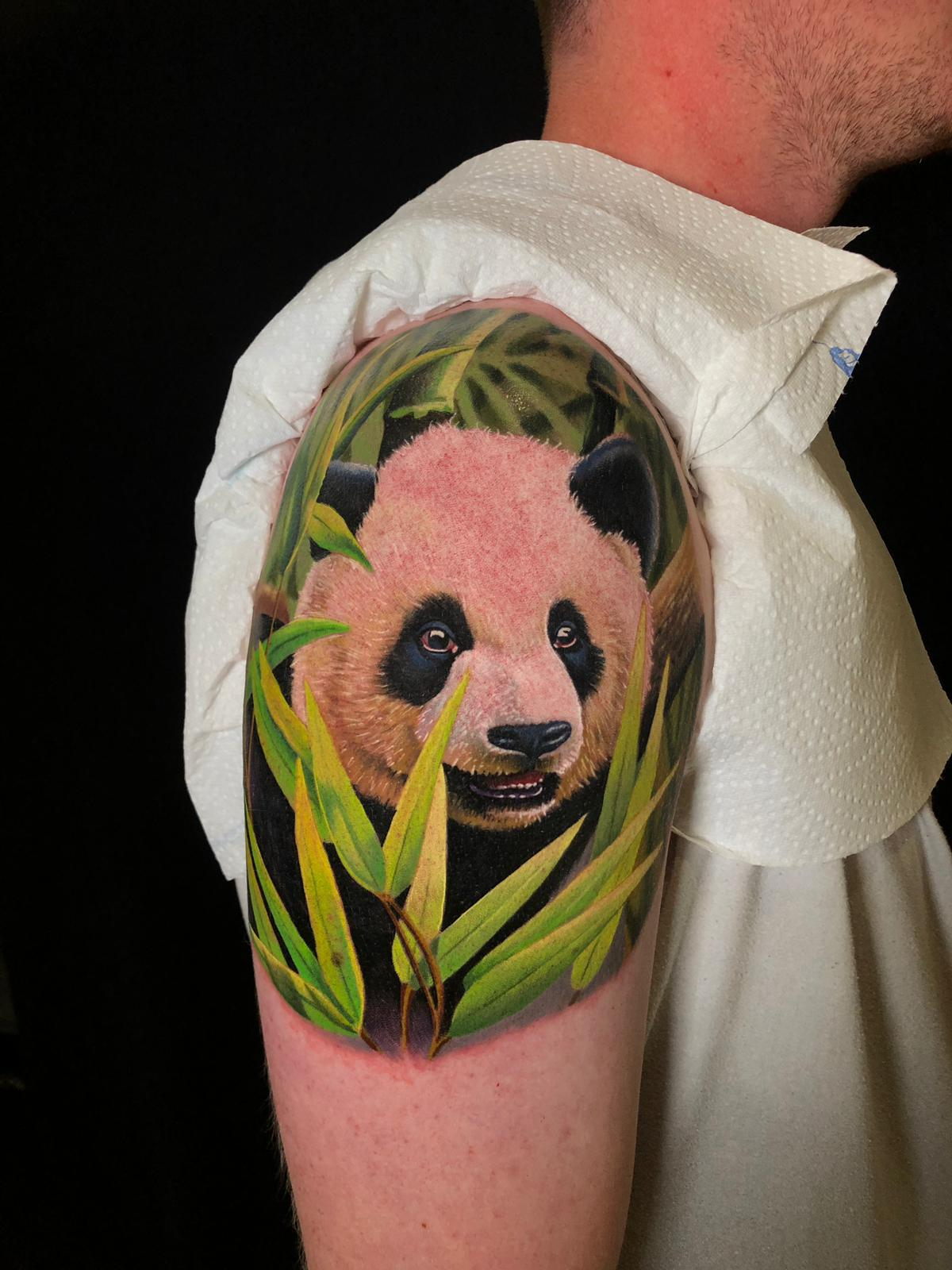 tattoo anansi münchen munich joe török tiere panda bär bear tier animal color realismus tätowierer artist art