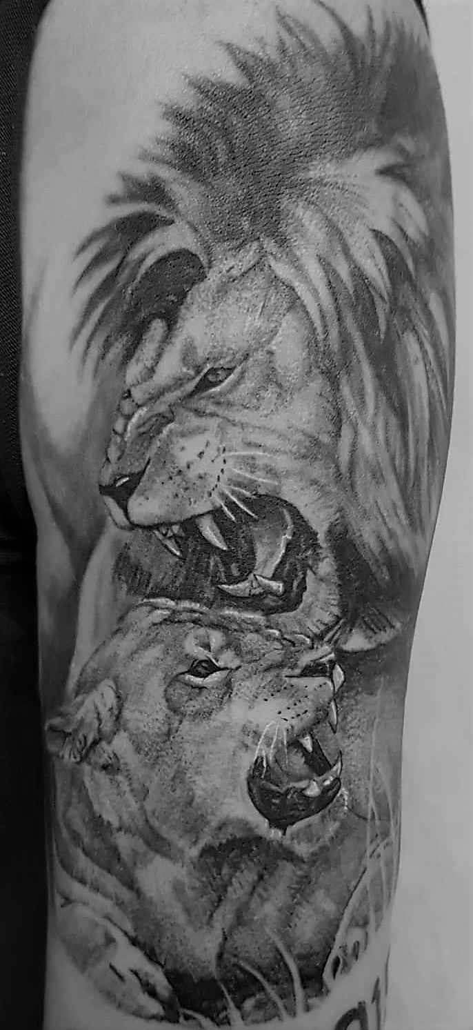 Tattoo Studio Anansi München realismus jason best black and grey bestes Löwe lion
