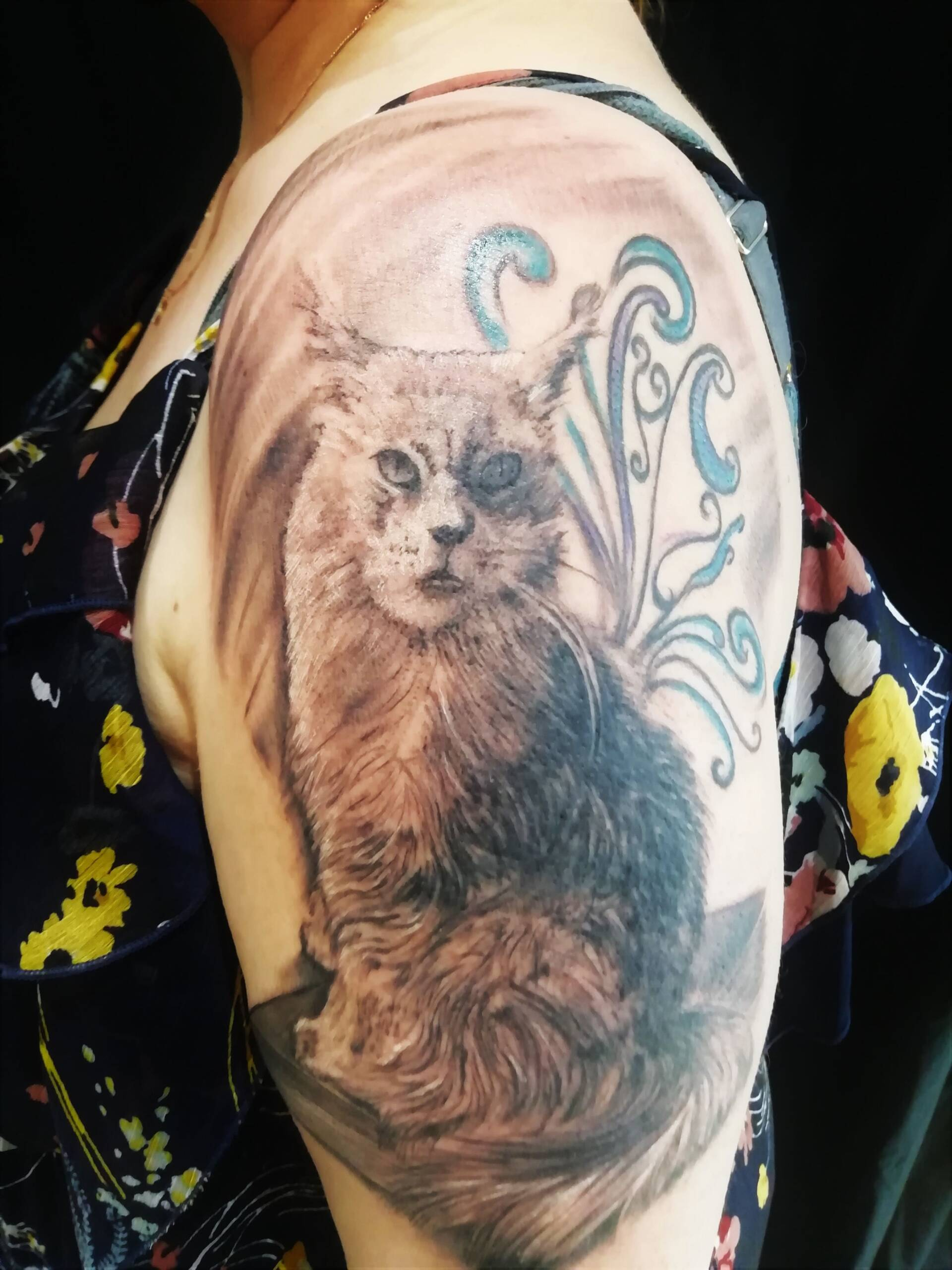 Tattoo Anansi München Artist Laszlo realistic cat main coon black and grey upper arm